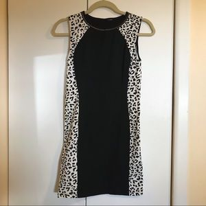 White Leopard Print and Black Bodycon Mini Dress